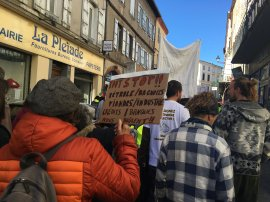 Marche pour le climat, 16/03/19, Pamiers.